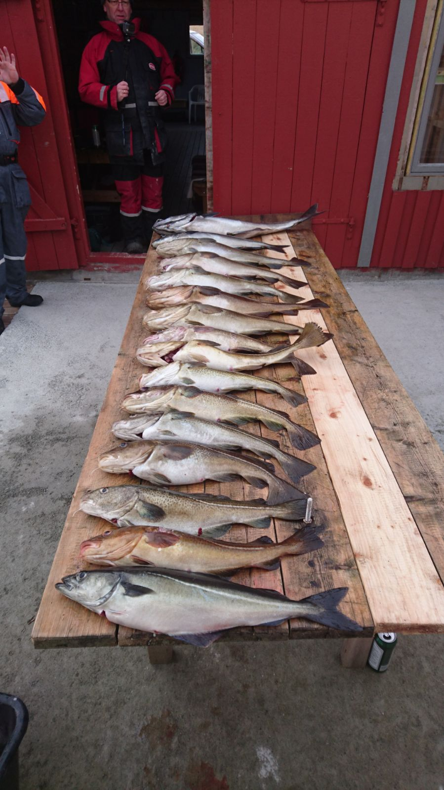 Fischstrecke Heringsbucht